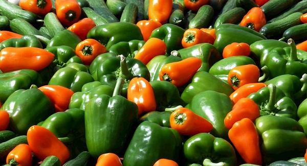 如何保障居民食品质量安全?食品安全检测侧仪的重要性